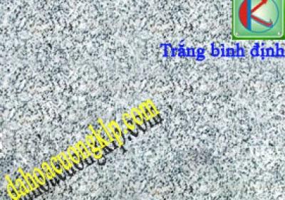 BINH DINH WHITE GRANITE